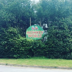 Monkey-World-entrance-sign